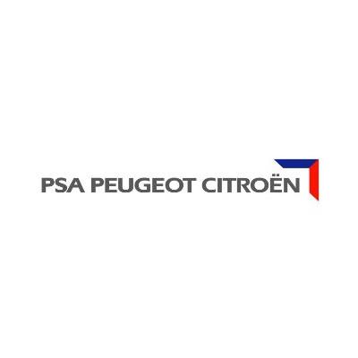 PSA Peugeot Citroen Metrolec